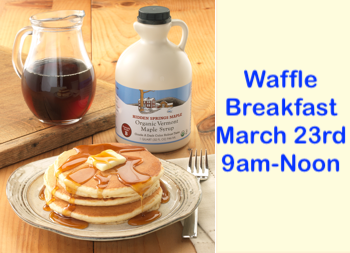 Pure Vermont Maple Syrup | Hidden Springs Maple